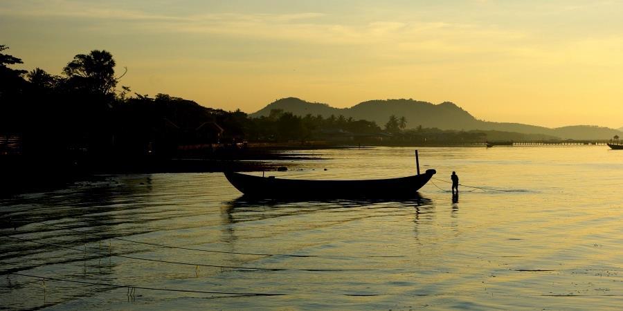 Un potager au Cambodge - Romdual