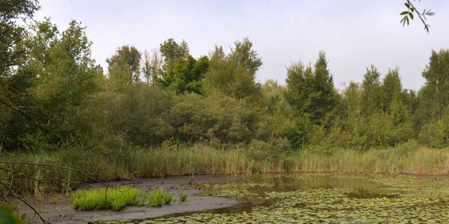 Ensemble, préservons la nature - Conservatoire d'espaces naturels de Picardie
