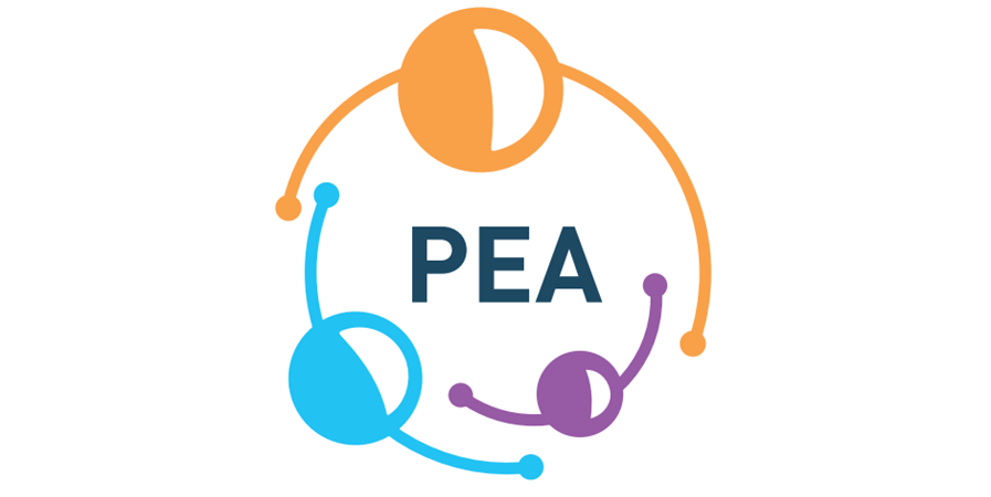 Faites un don à Psychomotricité En Action  - Pea