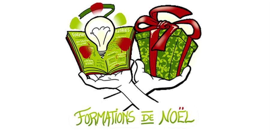 Collecte pour Les Pères Noël Verts : SPF75 x les formations de Noël - Secours populaire de Paris