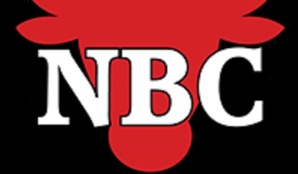 Licence NBC 2018-2019 - Dream Team Basket-ball Nieppe
