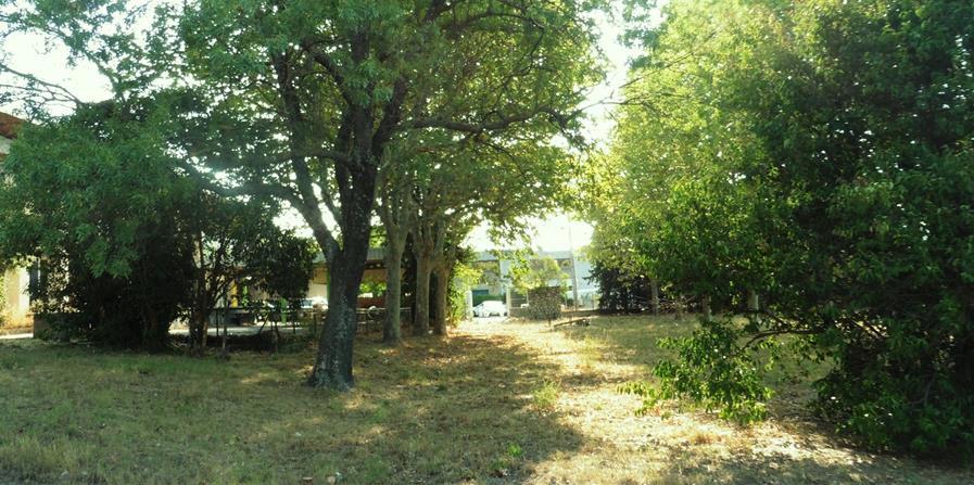 Les Jardins du GRAIN - Un îlot de biodiversité ludique et pédagogique - Le GRAIN de la Vallée