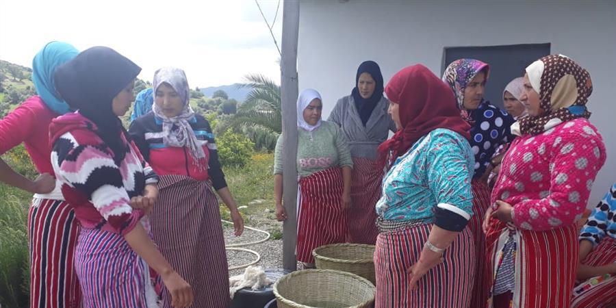 Formation au travail de la laine pour les femmes - DreamSeeders