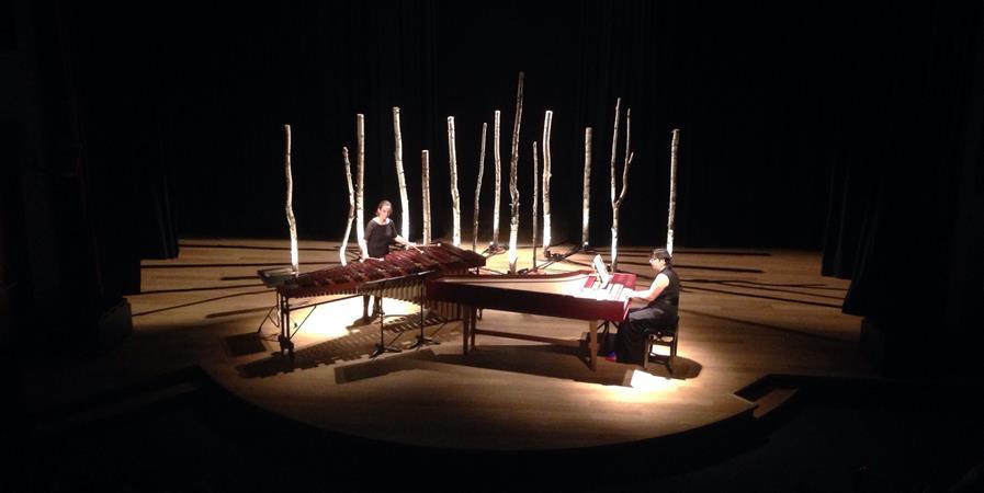 ARBRES : le nouveau spectacle du Duo Caudale  - Percu et Au-Delà
