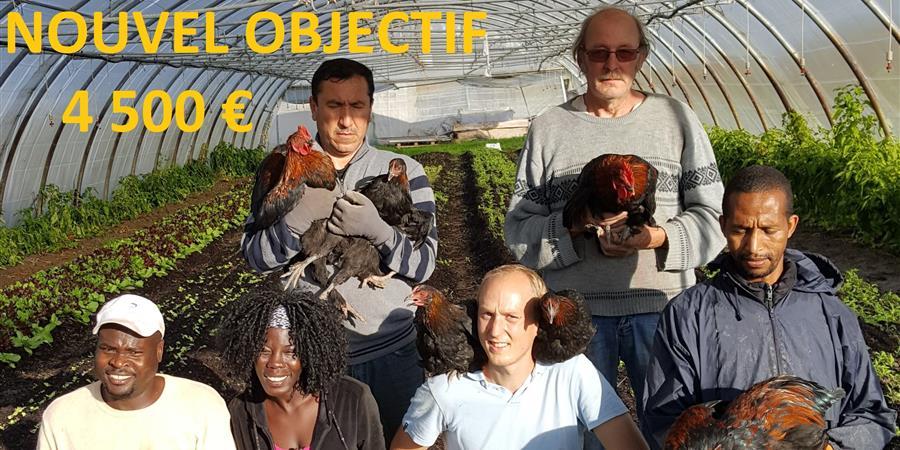 Les p'tites poules de la croisière - Les Jardins de la Croisière