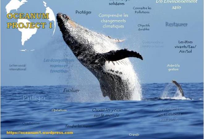 Projet OCEANUM I - ASSOCIATION OCEANUM