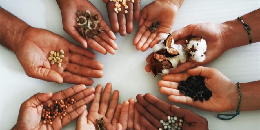 Soutenez les Maisons de la semence locale et patrimoniale - MALE'VA