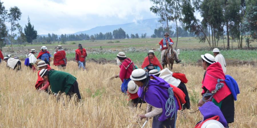 """Documentaire """"La Hacienda"""" en Equateur - Ahuana"""