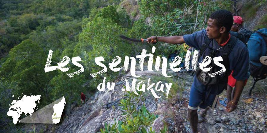 Les sentinelles du Makay - Naturevolution