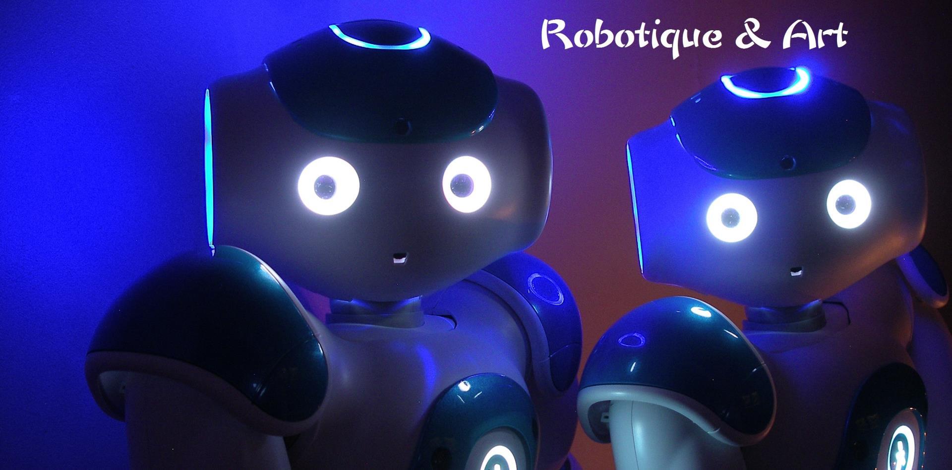 """Adhérer à l'association """"Robots!"""" - Robots!"""