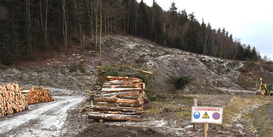 RN88 : aidez-nous à stopper ce projet d'un autre siècle - France Nature Environnement Auvergne-Rhône-Alpes
