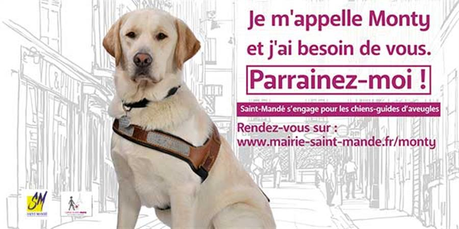 Le 1000ème chien guide - École de Chiens Guides de Paris