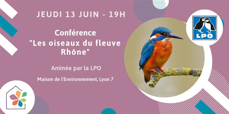 """Conférence """"Les oiseaux du fleuve Rhône"""" - Maison de l'environnement"""