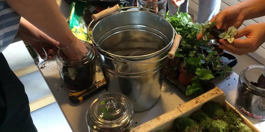 Atelier terrarium dans un pot de confiture par Succulente Design Vegetal - Labolic