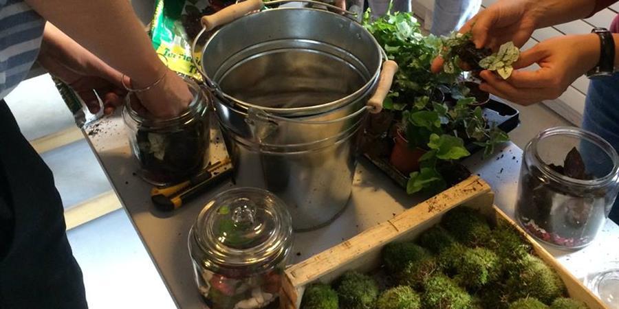 atelier terrarium dans un pot de confiture par succulente design vegetal. Black Bedroom Furniture Sets. Home Design Ideas