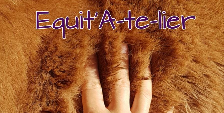 Pack 3 stages  - Equit'A-te-lier