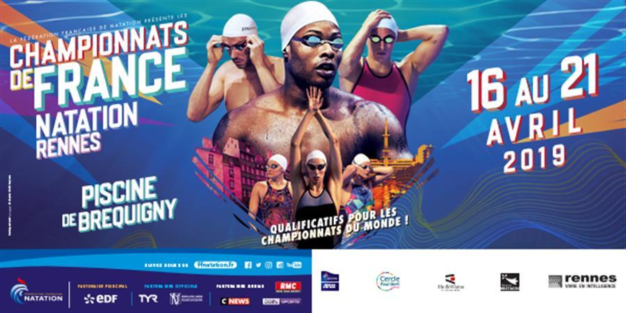 Championnats de France Elite - LIGUE REGIONALE DE BRETAGNE DE NATATION