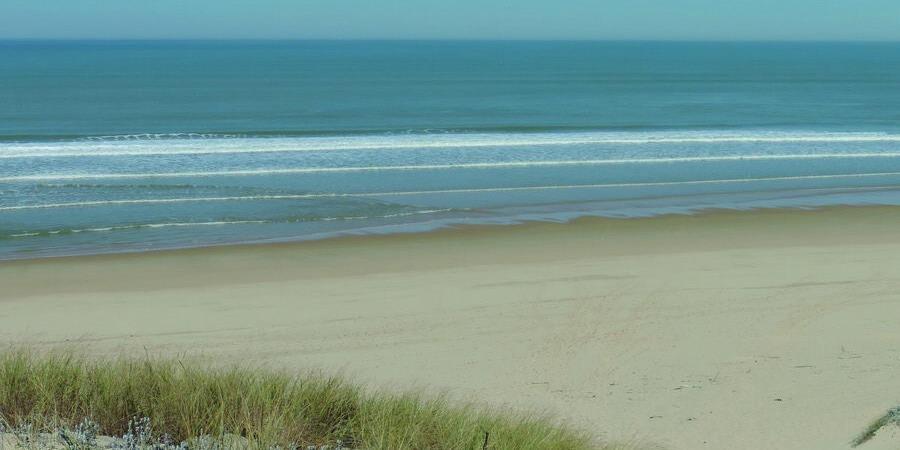 De la dune à l'océan à Lège Cap Ferret - 27 mai 2018 - Association Ecosite du Bourgailh