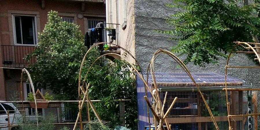 Initiation à la Permaculture - Ostara France