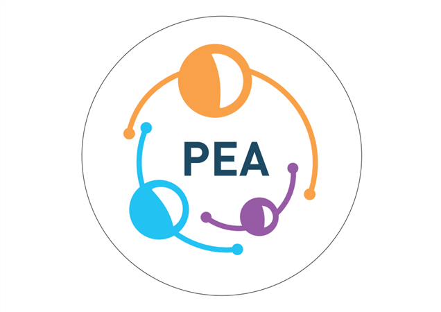 """Soirée PEA """"La chronologique"""" - Pea"""