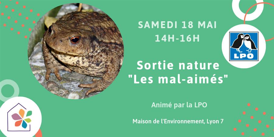 """Sortie nature """"Les animaux mal-aimés"""" avec la LPO - Maison de l'environnement"""