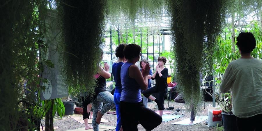 Yoga - 2 juin 2018 - Association Ecosite du Bourgailh