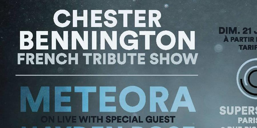 Chester Bennington French Tribute Show - Com'Unity Media Group