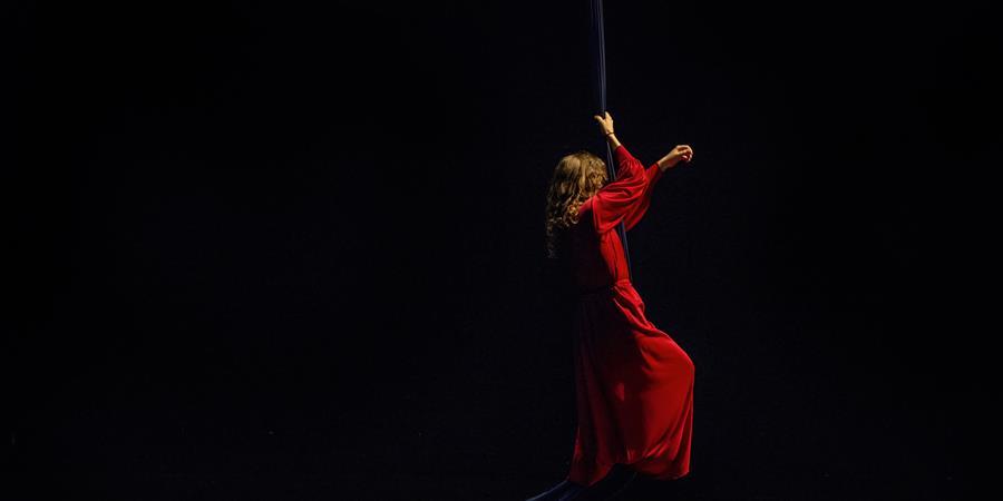 Stage Aériens-5 avril - MJC Ménival/Ecole de Cirque de Lyon