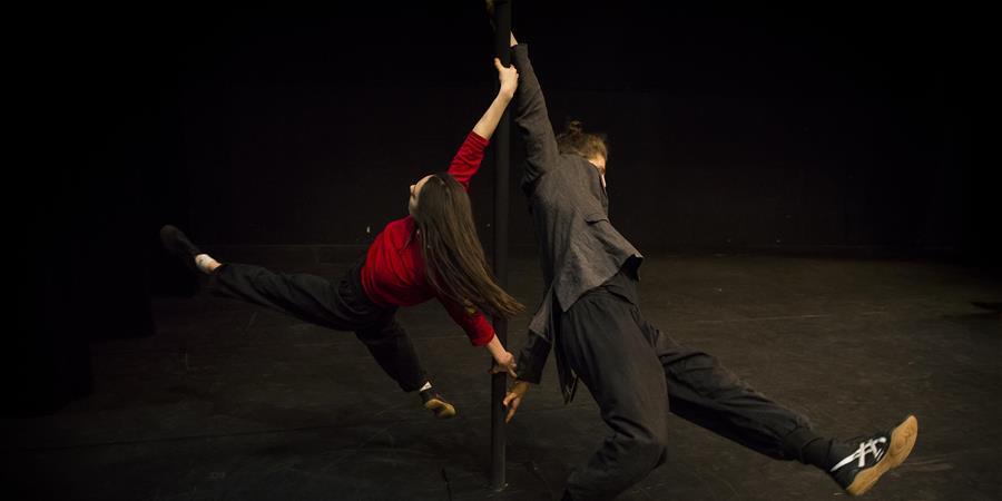 Stage Mât Chinois - MJC Ménival/Ecole de Cirque de Lyon