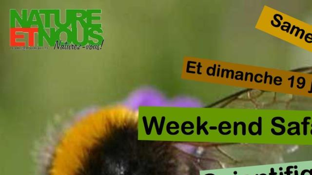 Week-end safari biodiversité 18-19 juin - NATUREETNOUS