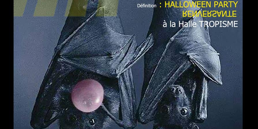 WTF#4-EX TENEBRIS LUX//31 oct [ Chapter 1 : HALLOWISME à TROPISME] - WHAT THE FEST ?!