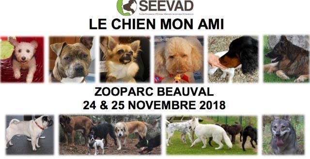 LE CHIEN MON AMI - Société Européenne d'Ethologie Vétérinaire de Animaux Domestiques