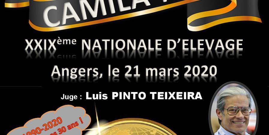 NATIONALE D'ÉLEVAGE  DU CAMILA-NEA ANGERS 2020 - CLUB DES AMATEURS DE MOLOSSOIDES IBERIQUES ET LATINO-AMERICAINS-NORD EUROPEENS ET ASIATIQUES (C.A.M.I.L.A-N.E.A)