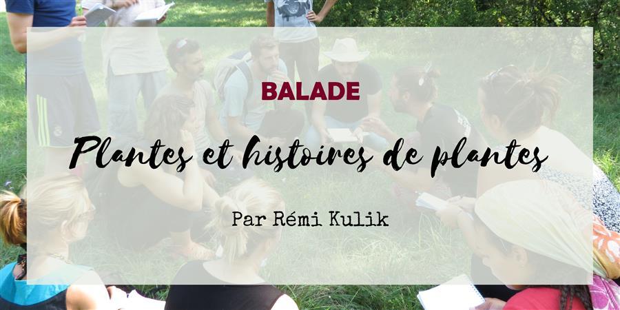 Balade Plantes et histoires de plantes - 23 mai - Le Jardin d'Emerveille