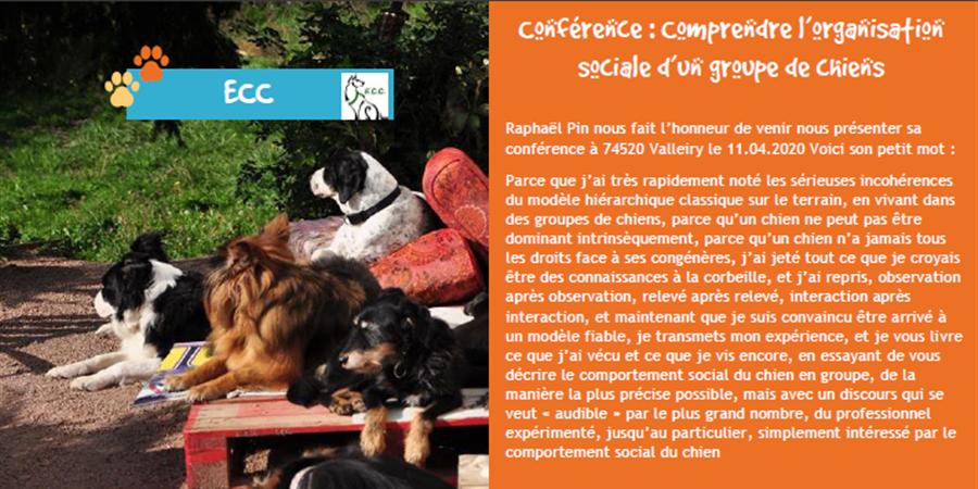 Conférence: comprendre l'organisation sociale d'un groupe de chiens R. PIN 11/04/2020 Valleiry (74) Ban-1a3371b06ff54c96af4db77a348668d6_sb900x582_bb0x0x900x450