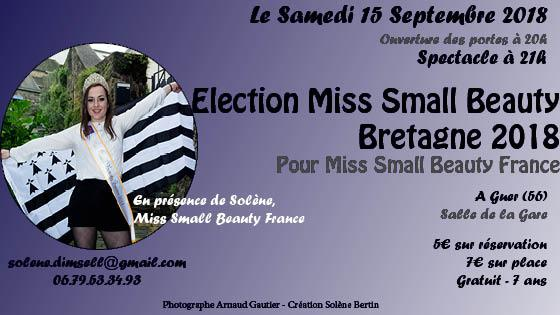 Election Miss Small Beauty Bretagne 2018 - DimSell