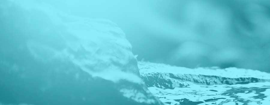 """Stage de Yoga Iyengar: Explorer les Éléments """"Feu et Eau"""", avec Peio - le 16/03 - Yoga Silence et Rythme Toulouse"""