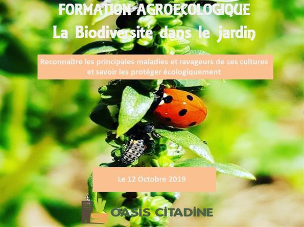 Formation agroécologique : La biodiversité dans le jardin - Oasis Citadine