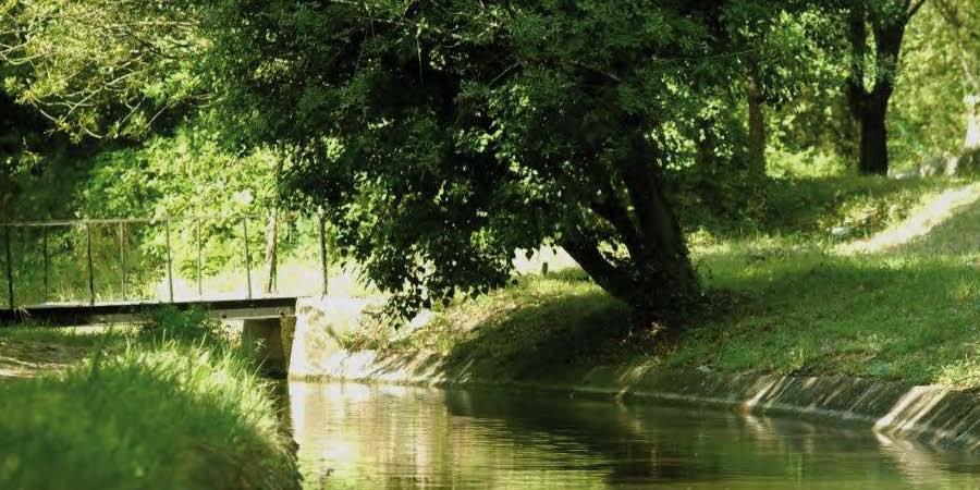 Rando fraîcheur au canal de la Siagne ! - Rando d'Azur