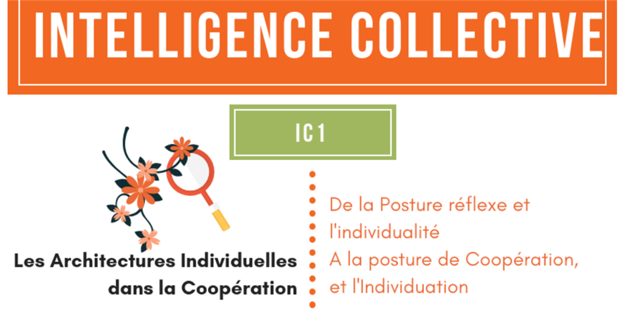 IC1 Mars: Favoriser et Faciliter la Posture de Coopération  - laboratoire du collectif