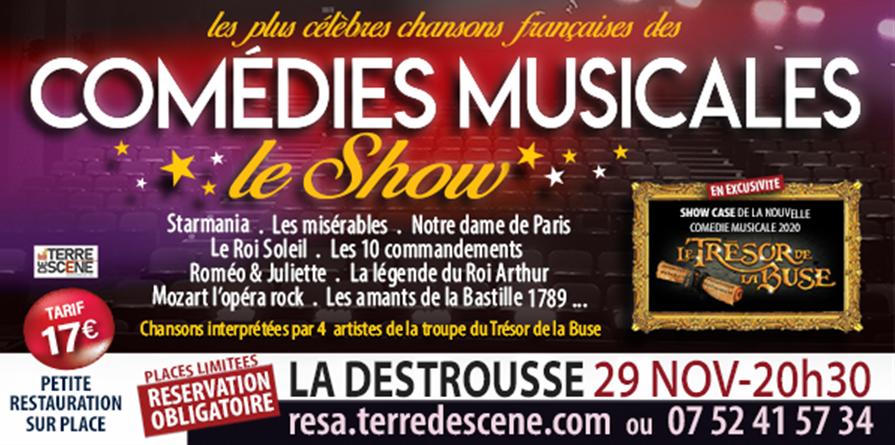 COMEDIE MUSICALE LE SHOW - Terre de Scène