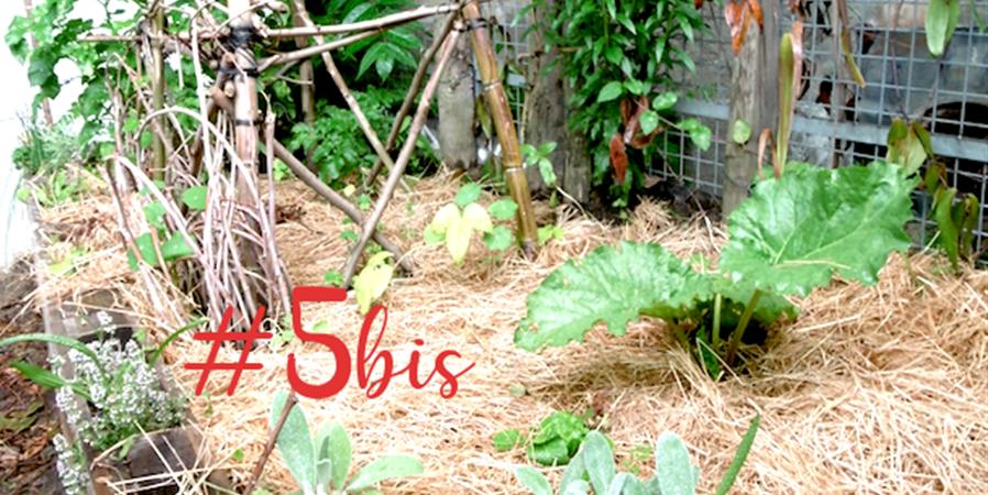 Jardinage au naturel #5 bis - Ecos