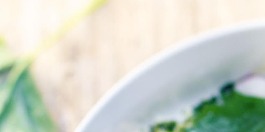 Atelier Nutrition :  Comment équilibrer son alimentation végétalienne - Utopia 37
