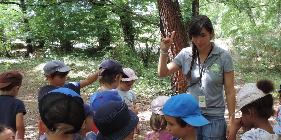 Les petits aventuriers de la nature - 31 juillet - 4 à 6 ans - Association Ecosite du Bourgailh