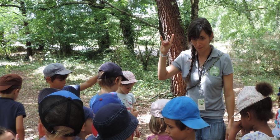 Les petits aventuriers de la nature - 7 août - 7 à 10 ans - Association Ecosite du Bourgailh