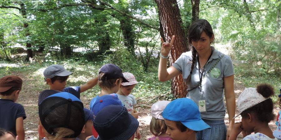 Les petits aventuriers de la nature - 17 juillet - 4 à 6 ans - Association Ecosite du Bourgailh