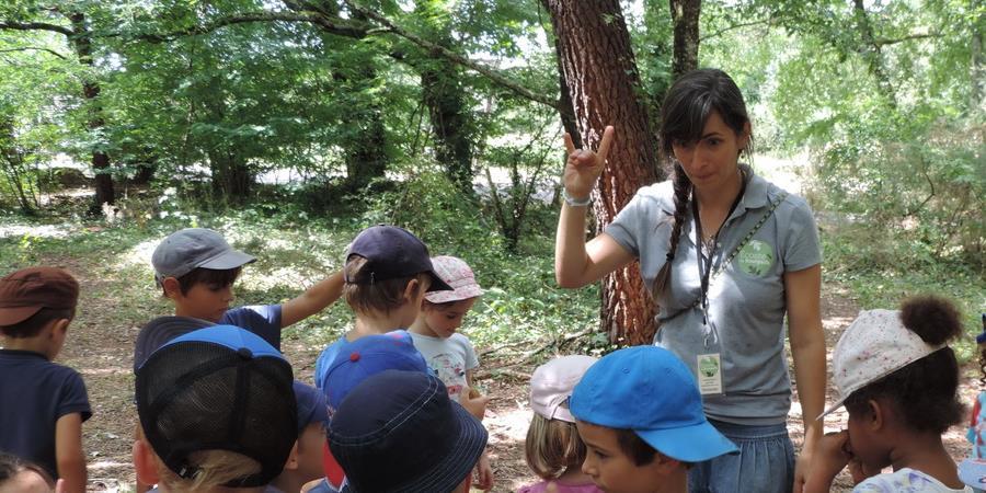 Les petits aventuriers de la nature - 10 juillet - 7 à 10 ans - Association Ecosite du Bourgailh
