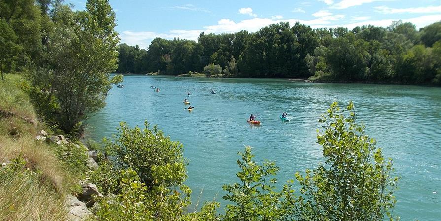 Sortie canoë kayak - Syndicat Mixte des Îles et Lônes du Rhône