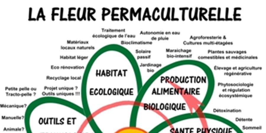 PDC - AVR19 Cours de Design en Permaculture - la foret nourriciere