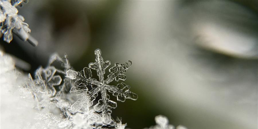 Attrape-rêve de l'hiver Parent-enfant - Pince-mi